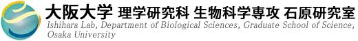 大阪大学 理学研究科 生物科学専攻 石原研究室 ミトコンドリア研究ロゴ